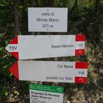 Sella Monte Mario