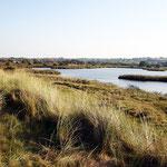 L'étang du Curnig