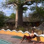 バオバブの生えるキャンプ場(グウェタ村 Planet Baobab)