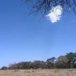 5日目にして初めて見た雲