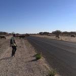 ボツワナで最初にお世話になった人ボイペーロ。彼は新手の飛脚でキャンプ場まで一緒に歩いてくれたが、帰りのタクシー代を要求された。(マウン市)