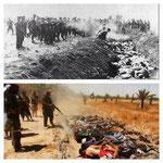 """Les crimes de """"Daech"""" rappellent ceux des SS!"""