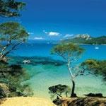 Insel Porquerolles