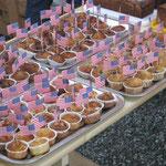 Muffins à la Rabbit Mountain
