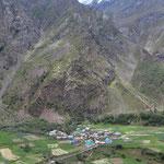 Landwirtschaft ist hier dominierend (in der Nähe von Keylong).