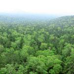 Daisetzsuzan-Nationalpark