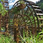 Grosse Wasserräder dienten vor allem früher zum Schöpfen von Wasser.