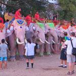 Elefanten ziehen immer viele Zuschauer an, auch in Thailand.