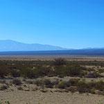 Über viele, viele Kilometer nur Büsche und Sand. Argentinien ist ein riesiges Land.