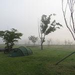 Herbstlicher Morgennebel bei 8 Grad - wir warten auf die wärmende Morgensonne.
