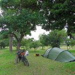 Übernachten in einem Park. Wir bauen das Zelt erst beim Eindunkeln auf.