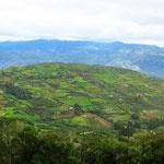 Hier auf 2500 m ü.M. haben schon die Chachapoyas Gemüse angebaut.