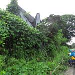 Immer wieder fahren wir an verlassenen Häusern vorbei. Viele Japaner ziehen in die Stadt, zudem nimmt die Bevölkerung ab.