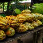 Kakaofrüchte und Kokosnüsse.