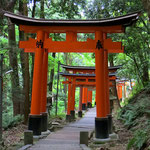 Im Fushimi Inari Schrein in Kyoto wandert man durch tausende rote Torbögen (Torii).