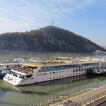 Luxuriöse Schiffe für die beliebten Donaukreuzfahrten.