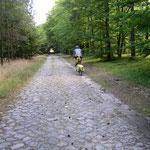 übles Kopfsteinpflaster . . . über 15 km . . .