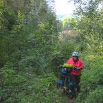 Nicht immer sind Abkürzungen ein Zeitgewinn. Pit hat ein spezielles Flair für solche Urwaldpfade.