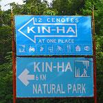 Viele Dutzende Cenotes buhlen um Kunden.