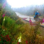 Wir frieren auf der Abfahrt zur chilnenischen Grenze.