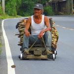 . . . donnert er mit seinem Gefährt (die Räder sind grosse Kugellager!), . . .