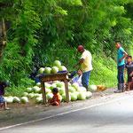 An der Strecke werden viele Melonen verkauft.