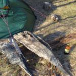 Mit Holz gesichert halten die Heringe auch beim starken Wind.