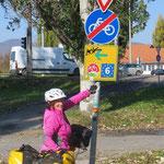 Auf dem Donauradweg.