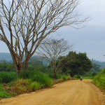 In Belize sind nur die wichtigen Highways asphaltiert.