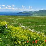 Blick von der Passhöhe zum Sevansee.