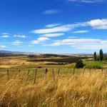 Landschaft nach Coyhaique.