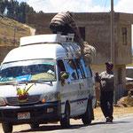 Verschnürt wie Gepäck werden lebende Schafe auf dem Autodach transportiert.