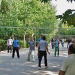 Volleyball ist sehr populär. Hier wird in einem Park auf vielen Feldern gespielt.