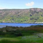 An der Laguna del Colta.