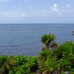 Einige hundert Meter vom Ufer entfernt verläuft das zweitgrösste Barrier Reef der Welt.