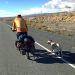 Erst nach 80 Kilometern können wir den Hund abhängen.