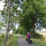 Solche Radwege gibt es immer wieder.