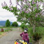 Vom herbstlichen Korea ins frühlingshafte Neuseeland. Ein spezielles Erlebnis.