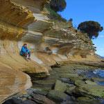 Bei den Paintet Cliffs.