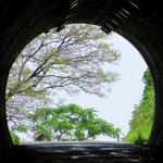 In Japan gibt es viele Tunnels zu durchfahren.