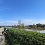 An der Sava