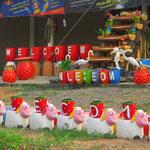"""Dreimal """"Welcome"""", dreimal falsch geschrieben. Viele Thailänder stehen mit Englisch auf Kriegsfuss."""