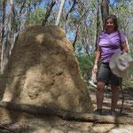 Termitenbauten gibt es viele. Manche werden meterhoch.