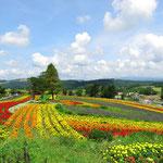 Blumengarten kurz vor Furano.