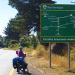 Es gibt im Norden Patagoniens viele Nationalpärke.