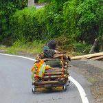 . . . beladen mit Brennholz mit gut 40 kmh an uns vorbei zu Tal.