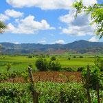 Wo es genügend Wasser gibt, wird Reis angebaut (in der Ebene hinten).