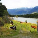Schlitzohren, die chilenischen Farmer. Gemäss unserer Info ist ein 20 m breiter Ufertreifen an Flüssen und Seen frei zugänglich.