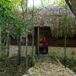 Wir dürfen in Kin Ha in der Urwaldhütte übernachten. Das Konzert der Vögel am Abend und am nächsten Morgen ist grandios!