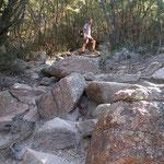 Wir geniessen das Wandern im Freycinet Nationalpark.